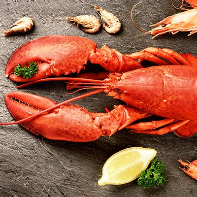 comment cuisiner le homard choisir et cuisiner le homard metro