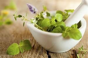 Травы для лечения простатита у мужчин