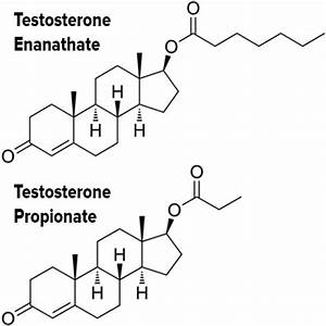testosterone propionate how to take