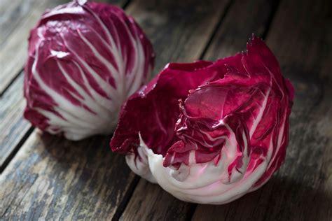 feine rezepte mit cicorino rosso migros impuls