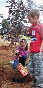 Plant-a-Tree Donation Form : Boys Farm
