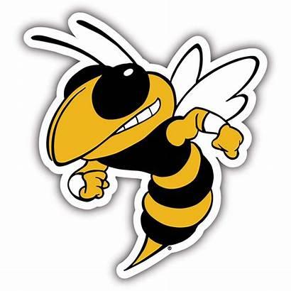Georgia Tech Football Team Clipart Yellow Jackets