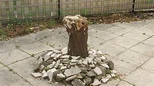 construire une table de jardin en bois de palette sur With maison en tronc d arbre