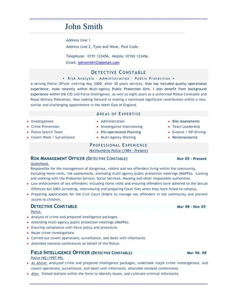 Professional Cv Template Word Document by Cv Word Doc Template