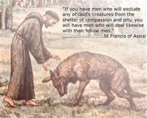 st francis of assisi quotes like success
