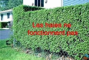 Cloison Jardin Anti Bruit : les cltures en tle ondule ne sont pas non plus une ~ Edinachiropracticcenter.com Idées de Décoration