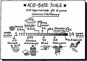 1000  Images About Acids And Bases On Pinterest