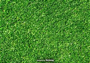 Lawn Nature - Green Grass Vector Background - Download ...