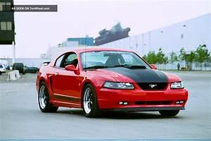 "2003 Mach 1 "" Machinator "" W / Cobra Terminator Motor 525hp Sema Showcar"