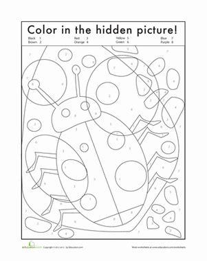 Hidden Bug  Worksheet Educationcom