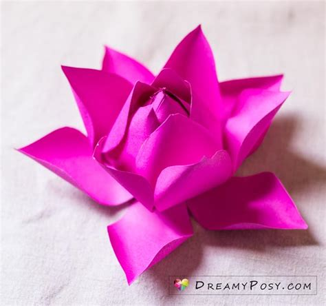 lotus flower dreamyposy templates