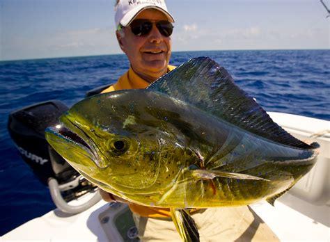 fishing florida keys sea deep fish dolphin fun report fl charters much