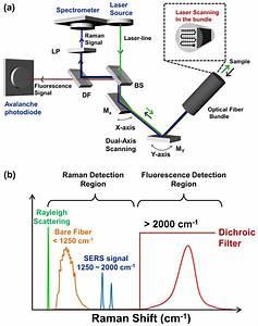 An Optical Design Of The Fluorescence