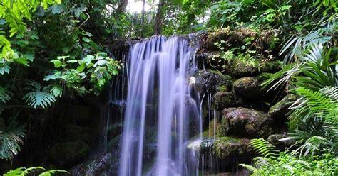 hiking trails  waterfalls  tampa fl
