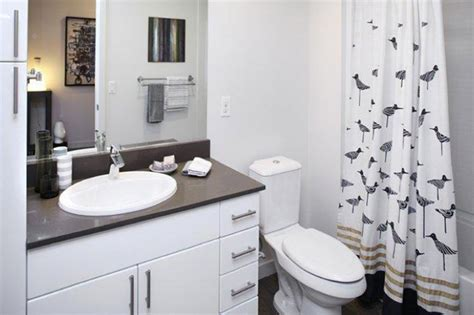 Apartment Bathroom Makeover by Bathroom Makeovers For 100 At Home Trulia