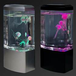 Jellyfish Mood L Australia by Jellyfish Tank Mood Light Aquarium Style Relaxing Led