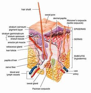 corticosteroids acute asthma