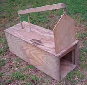 Small Animal Trap  0 Steps
