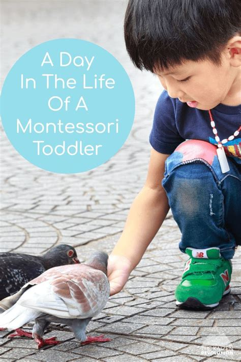 daily routine   montessori toddler  home  images