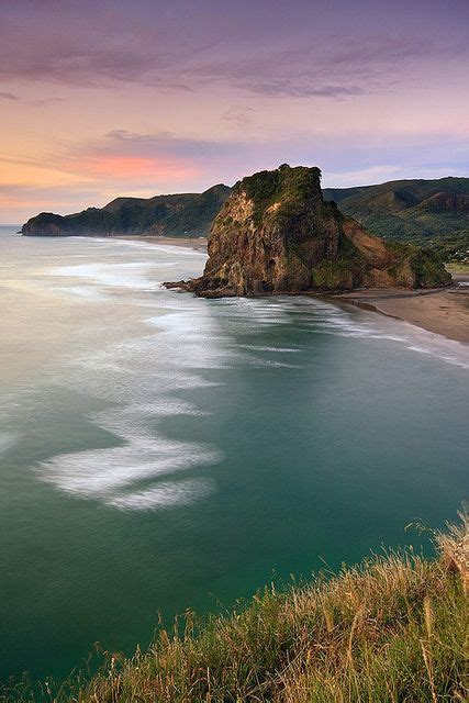 Lion Rock Piha Near Auckland New Zealand Travel