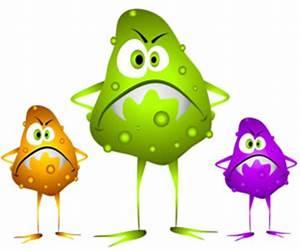 Bad Bacteria – DrGina.com – Concierge Integrative Medicine