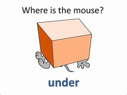 Prepositions Ppt Presentation
