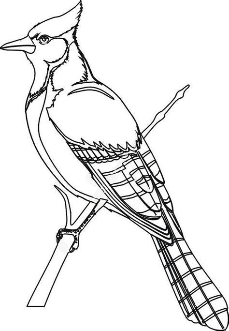 disegni da colorare uccelli disegni da colorare tema uccelli settemuse it