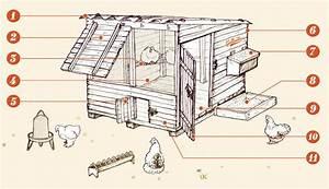Plan Poulailler 5 Poules : construire un poulailler terrasse en bois ~ Premium-room.com Idées de Décoration