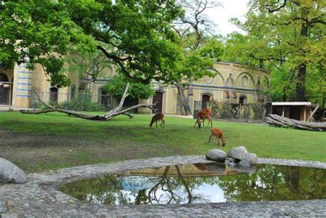 Zoologischer Garten Berlin Gefährlich by Zoologischer Garten Berlin Foto Di Zoologischer Garten