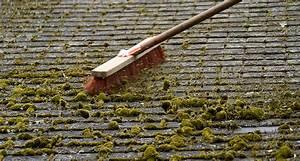 Claude Creusier 4C Démoussage et entretien des toitures