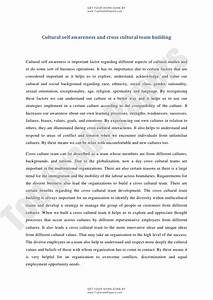 Cultural Competence Essay Organize Research Papers Purnell Model For  Cultural Competence Essay Examples Modest Proposal Essay Examples also Essay On Library In English  Essay About Health