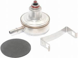 Mopar U00ae 4798301 Fuel Filter  U0026 Regulator For 97