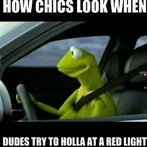 The gallery for --> Kermit Driving