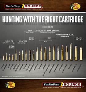 Use This Rifle Caliber Chart To Pick The Right Ammo For
