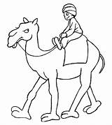 Camel Coloring Printable Colouring Camelos Imprimir Imagens Cammello Momjunction Disegni Colorir Animali Animals Alligator Colorido sketch template