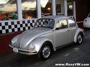 1998 Mexican Beetle