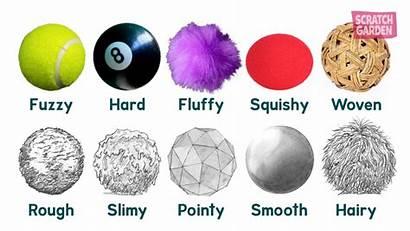 Texture Teach Describe Words Textures Many Garden