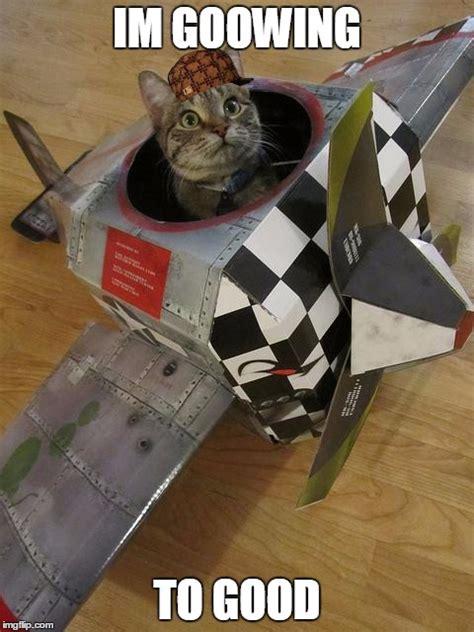 airplane cat imgflip