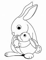 Rabbit Coloring Printable Rabbits Justcolor Bunny Colouring Children sketch template