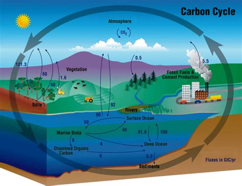 Can We Rebalance The Carbon Cycle While Still Using Fossil
