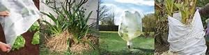 Protection Arbres Fruitiers : protection des plantes fruitiers et l gumes contre le gel ~ Premium-room.com Idées de Décoration