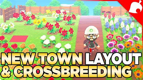 town layout crossbreeding  flower