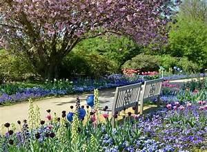 Blauregen Im Kübel : arboretum ellerhoop thiensen gr ser im k bel berwintern ~ Frokenaadalensverden.com Haus und Dekorationen