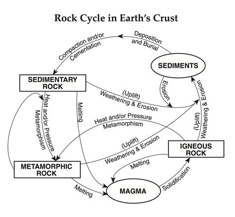 rock cycle worksheet middle school worksheets for all