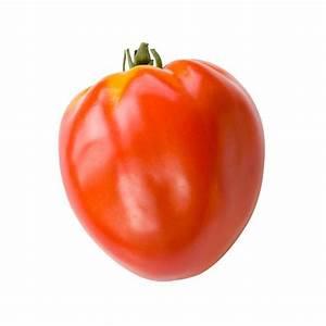 Planter Graine Tomate : tomate coeur de boeuf plante en ligne ~ Dallasstarsshop.com Idées de Décoration