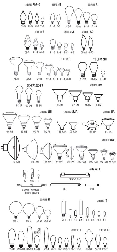 light bulb size light sizes lights card and decore