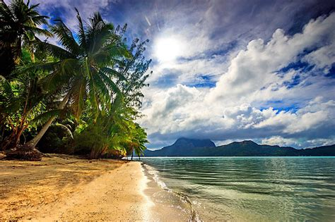 Nature Landscape Beach Sea Palm Trees Clouds Island