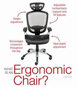 Choosing The Best Ergonomic Office Chair Staples Nada Part