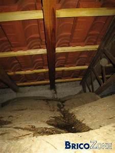 Infiltration Eau Toit : infiltration d 39 eau dans nouvelle toiture ~ Maxctalentgroup.com Avis de Voitures