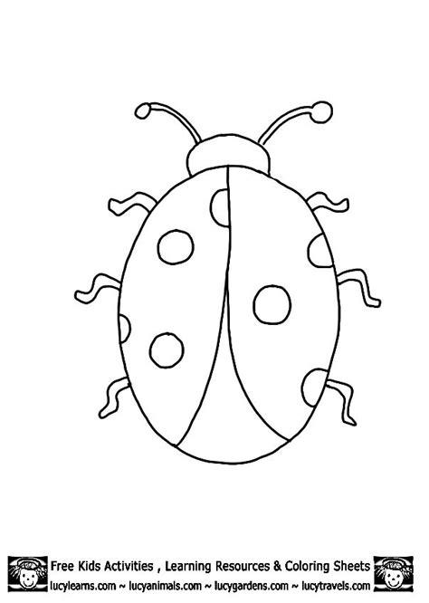 animal outlines  print ladybug outline template